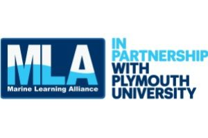 New Degree and Masters Pathways with MLA